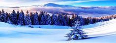 Winter Season, Mountains HD Wide Wallpaper for UHD Widescreen desktop & smartphone Winter Scenery, Winter Trees, Winter Snow, Landscape Walls, Mountain Landscape, Winter Landscape, Scenery Wallpaper, Wallpaper Backgrounds, Wallpapers