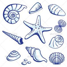 Sea Set From Starfishes and Cockleshells. illustration on white background. Sea Set From Starfishes and Cockleshells. illustration on white background. Coloring Books, Coloring Pages, Shell Collection, Tattoo Graphic, Fish Drawings, Beach Art, Blue Beach, Art Plastique, Embroidery