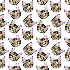 Tabby kitten pattern by Laura Manfre, via Flickr