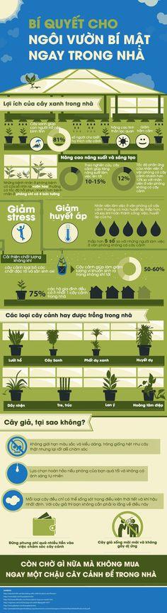 """Tạo dựng vườn cây cảnh """"bí mật"""" cho căn nhà của bạn - Emdep.vn"""