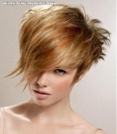 Wedge Haircut Photograph