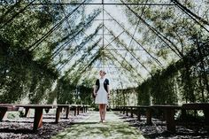 https://flic.kr/p/CujJgV | A tree Church in New Zealand | We are slowly getting over the Jetlag and started taking more day-trips over here in New Zealand. We've been visiting a Church made out of trees today. I really nice location for a wedding i guess although it could get a bit wet in there when it's raining ;-)   This is taken on the Sony alpha 7rII with the ZEISS Loxia 21mm 2.8
