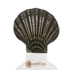 Balboa Seashell - Beachnut Bronze