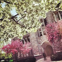 A fantastic photo of Butler University from student Thanks for the picture! Keep tagging in your favorite campus photos to be featured on our website! Stony Brook University, Butler University, University Of Wisconsin, Nursing Schools In Colorado, Top Nursing Schools, College Usa, College Campus, What Is An Lpn, Top 10 Colleges