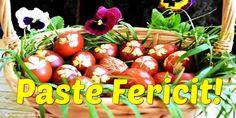 Am Meer, Past, Vegetables, Past Tense, Vegetable Recipes, Veggies