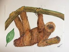 Original One Off Watercolour of Sloth hanging from Tree by PollysPicturesArt on Etsy