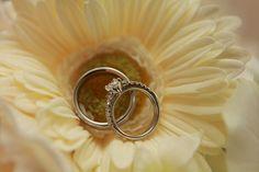 Rings of beauty