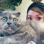 hair&make★Welina★さん(@hitomi0107welina) • Instagram写真と動画