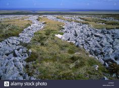 "Landscape With Stone Runs in the Falkland Islands. Read about it in ""Little Black Lies"" by Sharon Bolton."