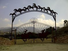 Running On Coffee: Running/Hiking Week in Review= mountains ranch gate horses