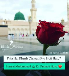 ICC World Cup Virat Kohli Press Conference Told the Early Matches Before the World Cup Urdu Quotes Islamic, La Ilaha Illallah, Good Morning Inspiration, Masjid Al Haram, Noble Quran, Quran Quotes Inspirational, Islamic Girl, Beautiful Islamic Quotes, Gulzar Quotes