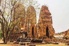 """""""Frozen in time ⏰ Ruins of Wat Maha That or the Monastery of the great relic lies in Ayuthhaya…"""""""