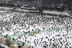 sabato 5 gennaio 2013 | Hwacheon, Corea del Sud - (AP Photo/Ahn Young-joon) - Migliaia di pescatori gettano ami nei buchi creati sulla superficie ghiacciata di un fiume per catturare delle trote durante il Festival del ghiaccio a Hwacheon, Corea del Sud.