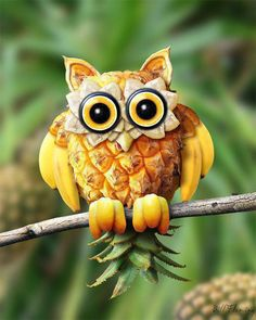 Fruitowl  (via Discover The Beauty Of Our Life)