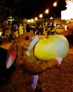 Señor conejo! 🐇