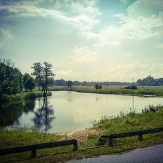 Nad Bugiem. #rzeka #krajobraz #widok #drzewa #woda #pogoda #podroz #podrozowanie #polska #wschod #podlasie