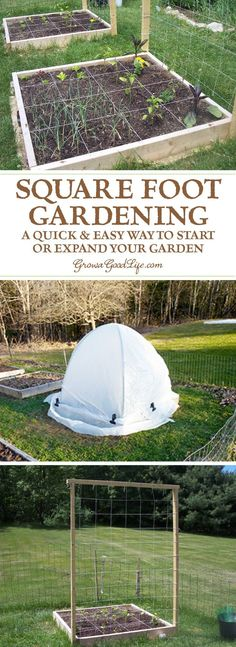 If you are just starting a garden or want to expand your growing space, the Square Foot Gardening method is worth considering. The beds are easy to build with no digging or tilling required.