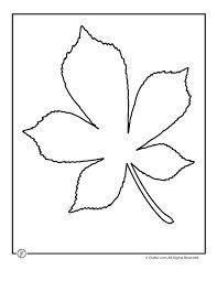 Image result for simple oak leaf outline