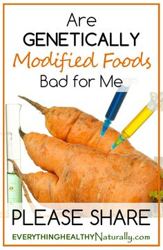 Are Genetically Modified Foods Bad for Me?