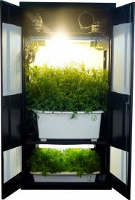 Want to grow your own fresh herbs and veggies? Check this thing out. The Deluxe 3.0 Grow Closet! www.FullBloomHydroponics.net