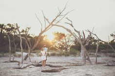 Folly Beach lifestyle engagement portraits   Engaged couple enjoying time together under tree boneyard on the beach   Charleston Engagement Photographers @billiejojeremy  #charlestonengagment #sunflare #follybeach #charlestonphotographers #husbandandwifephotographers #engaged #engagement #lifestylephotography #beach #lifestyleengagement #portraits  #getoutside #outdoors #active #liveauthentic #sunsetportraits