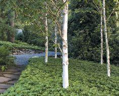 Garden Sculpture  Katie Brown's garden