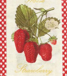 "Novelty Cotton Fabric 43""-Patch Strawberry"