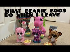 What my beanie boos do when i leave my room. YouTube 6192d86078e7