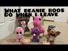 38c3a4b29ae What my beanie boos do when i leave my room. YouTube