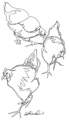 cute chooks