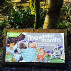 Gruffalo trail Gruffalo Trail, Keep Warm, Hedgehog, Winter, Painting, Animals, Art, Winter Time, Art Background