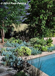 This was thirsty lawn, azaleas, and camellias before the owners hired Bernard Trainor to redesign their Palo Alto garden. Now it's full of beautiful succulents and other water-thrifty plants, plus entertaining and play spaces. | Digging