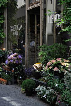 flowers + plants line the outside of urs bergmann florist (elephanten-apotheke), zürich, switzerland Flower Shop Design, Wonderful Flowers, Simple Flowers, Exotic Flowers, Spring Flowers, Blue Flowers, Flower Market, Flower Shops, Flower Boutique
