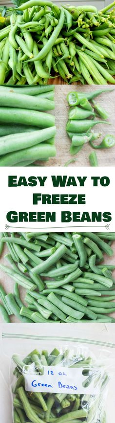 Easy Step By Step Instructions On How To Freeze Green Beans Without Blanching. Easy Step By Step Instructions On How To Freeze Green Beans Without Blanching. These Green Beans Wi Freeze Fresh Green Beans, Freeze Beans, Growing Green Beans, Frozen Green Beans, Freezing Green Beans, Fresh Green Bean Recipes, Blanching Green Beans, Freezing Fruit, Freezing Vegetables