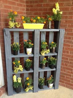 Pallet Plant Stand-PAINT IT A SOFT GREY, plant contrasting colours like this one - YELLOWS- and notice NO FANCY POTS - theres plastic, glass jars , the mind just boggles for ideas here