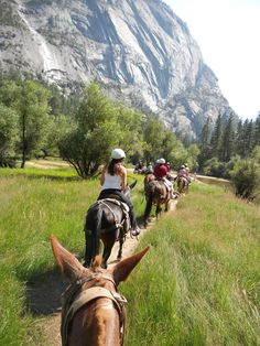 Horse back riding in Yosemite National Park | Need to find one of these that's a little more of a free ride & less single file slow & steady