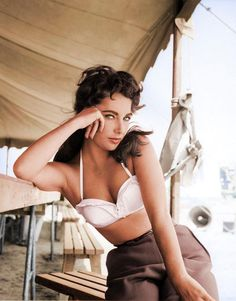 The beauty that is Liz Taylor. Look at that tiny waist! No wonder she married 7 men (one of them twice) with smouldering eyes like those...