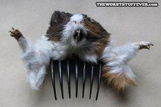 Dead rat hair comb? @Vikkitokarick I'm getting this for you!!