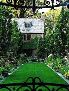 Layouts - landscaped terrace and garden lawn plants