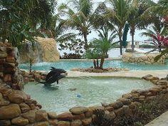 Marathon house rental - 1  YES. Bahia Honda St Park. Drive from Miami....Swim w Dolphins