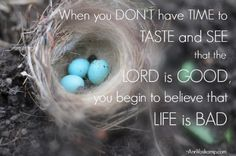 ...taste and see that the Lord is good. Yes! ~Ann Voskamp
