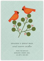 Holiday Cards - Paperless Post