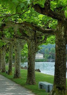A Walk Along Lake Como - Italy