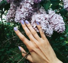 It's not that there aren't enough nail polish brands to get excited about already, but hey, it's spring, and lacquers free of potentially harmful toluene, formaldehyde and camphor, are all around!