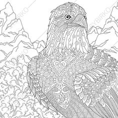 Eagle Hawk Falcon Bird of prey Adult by ColoringPageExpress