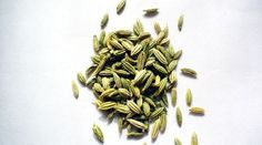 Benefits of Fennel Herb for Health Roasted Fennel, Fennel Seeds, Benefits Of Fennel, Health Benefits, Health Tips, Fennel Essential Oil, Barley Risotto, Fennel Recipes, Natural Remedies