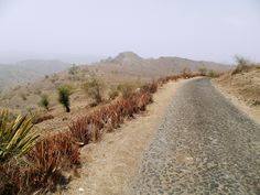 Nous suivons la petite route vers le village de Porto Madeira - Santiago - Cap Vert.
