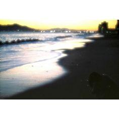 Repost a new photo taken by you_ph723! . 飛行機が飛び立つ3時間前 小さくなって海を見る大福ちゃん . #film #om1 #OLYMPUS #Japan #hokkaido #hakodate #IGersJP #函館 #大福ちゃん http://ift.tt/1W5LxlB #searchinstagram #instagramsearch http://goo.gl/bH29do - http://ift.tt/1Myc4xw