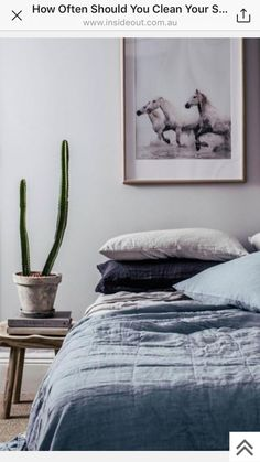 Bedcovers color