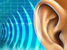 La pérdida auditiva  Se recomienda una dosis diaria de canela y miel, en la mañana y en la noche, para evitar o restaurar la pérdidad de la ...